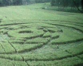 circle_crop_detik_com