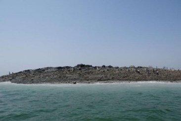 pulau_baru