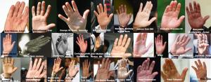 tangan_berbicara_hand_spoken