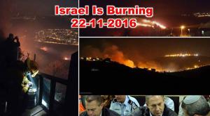 israel_burn_22_11_2016
